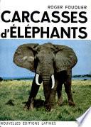 Carcasses D' Elephants