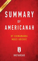Summary of Americanah
