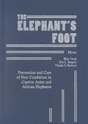 The Elephant s Foot