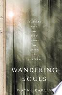 Book Wandering Souls