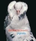 Extraordinary Pigeons Book PDF