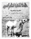 الانماط الشكلية لكلام العرب