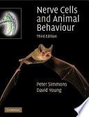 Nerve Cells and Animal Behaviour