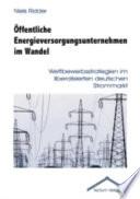 Öffentliche Energieversorgungsunternehmen im Wandel