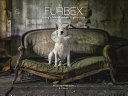 Furbex : underground passion for