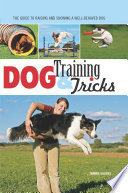 Dog Training   Tricks