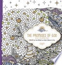 The Promises of God   Adult Coloring Book
