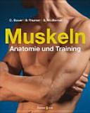 Muskeln