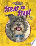 Stray to Star!
