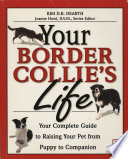 Your Border Collie s Life