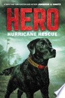 Hero  Hurricane Rescue
