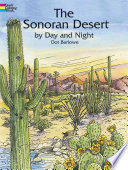 The Sonoran Desert by Day and Night