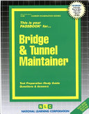Bridge and Tunnel Maintainer