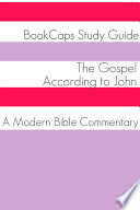 The Gospel According To John A Modern Bible Commentary