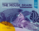 Paxinos And Franklin S The Mouse Brain In Stereotaxic Coordinates Compact
