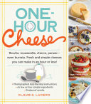 One Hour Cheese