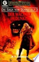 Die Saga vom Dunkelelf 3