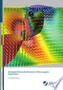 Multiscale Multimodel Simulation of Micromagnetic Singularities