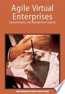 Agile Virtual Enterprises