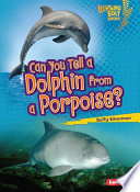 Can You Tell a Dolphin from a Porpoise