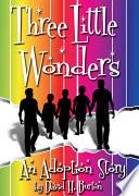 Three Little Wonders  An Adoption Story