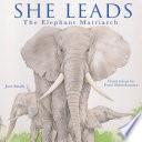 She Leads Book PDF