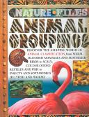 Animal Groupings