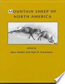 Mountain Sheep of North America