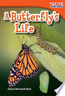 A Butterfly s Life