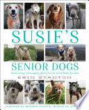Susie s Senior Dogs