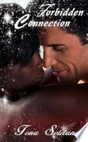 Forbidden Connection: Interracial Erotic Romance