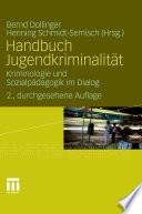 Handbuch Jugendkriminalität