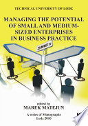 Managing the Potential of Small and Medium Sized Enterprises in Business Practice