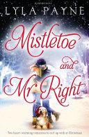 Book Mistletoe and Mr  Right