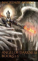 Angel Of Darkness : vilyron where his uncle is the king. all...