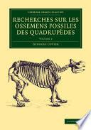 Recherches sur les ossemens fossiles des quadrup  des