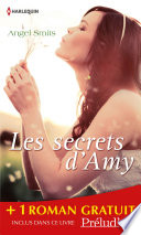 Les secrets d Amy   Les lumi  res de No  l
