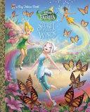 Secret of the Wings  Disney Fairies