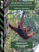 Borneo Malese   Il canto della giungla