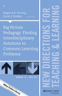Big Picture Pedagogy: Finding Interdisciplinary Solutions to Common Learning Problems