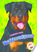 Rottweilers