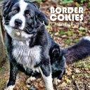 Border Collies Calendar 2018