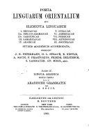 Analis che Grammatik Paradigmen Literatur