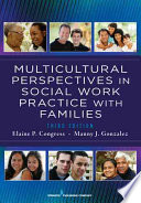 Multicultural Perspectives In Social Work Practice with Families  3rd Edition