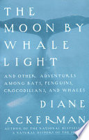 Moon By Whale Light