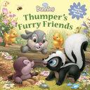 Disney Bunnies  Thumper s Furry Friends