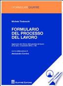Formulario del processo del lavoro  Con CD ROM