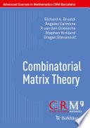 Combinatorial Matrix Theory : an advanced course on combinatorial matrix...