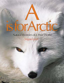 A Is For Arctic