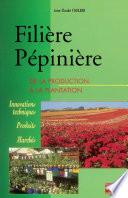 Fili  re p  pini  re   de la production    la plantation